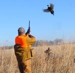 """""""Cabin Fever"""" For The Bird Hunter…."""