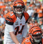 Hoard: Is There Something Different About These Bengals?
