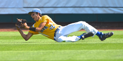 Minster's Jack Dapore makes a diving catch in bottom of the second inning in Saturday's Division IV championship game.