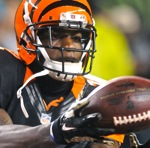"""Hoard:  Bengals Now 8-0, A """"Team Without A Weakness""""…"""