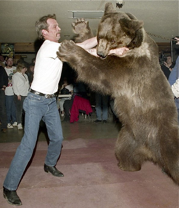 The Bear Story Is True…And The Taxpayer's Ultimate Reprisal
