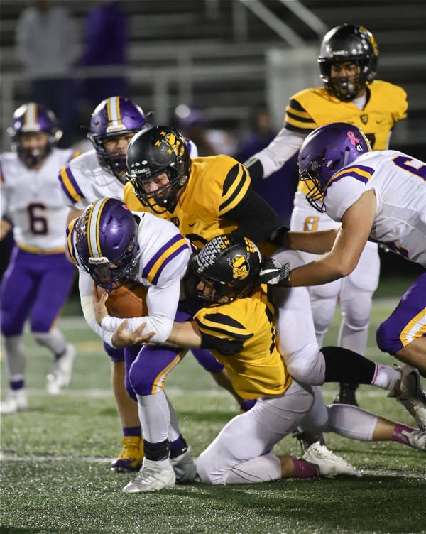 Butler Did It … Aviators' Defense Helps Dish Out 27-9 Win Over Sidney