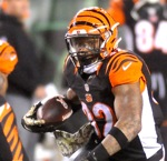 Hoard:  The Bengals, And The World Turns