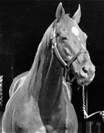Remembering The Greatest Of The Greats…Man O' War